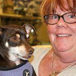 Mengenal Utopia Animal Rescue Ranch di Texas